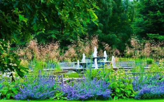Cambridge-Botanic-Garden-5337